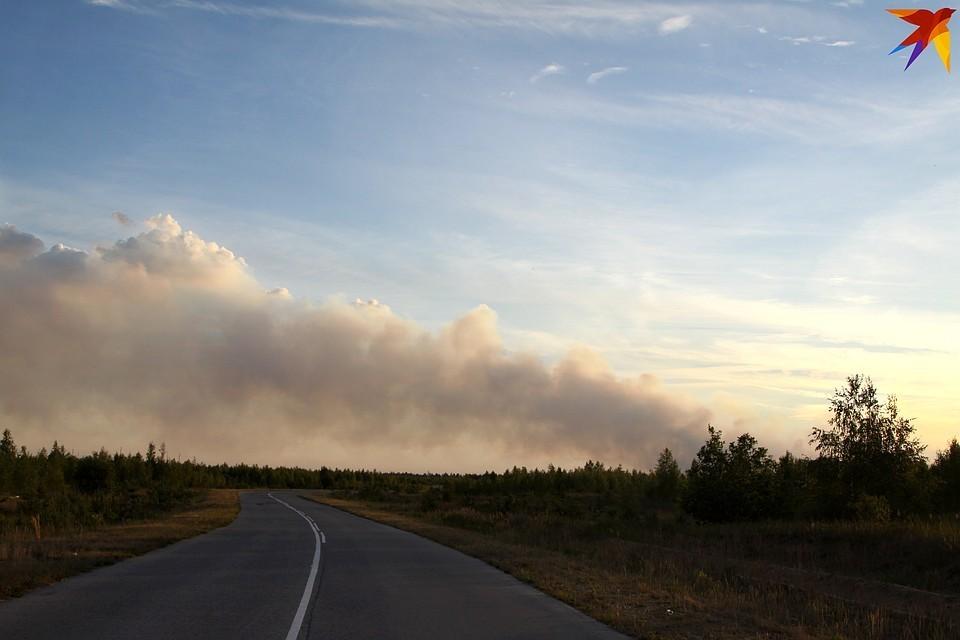 Фото селецкого пожара.