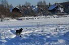 Приметы погоды на Покров, по которым определяют, какая будет зима 2019-2020 в Кирове