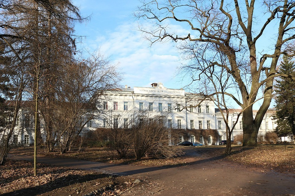 Студенты и преподаватели смогли отстоять свой университет. Фото: СПбГЛТУ