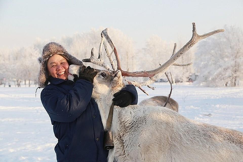 Запретить отстрел. Минприроды призывает Якутию и Красноярский край защитить северного оленя