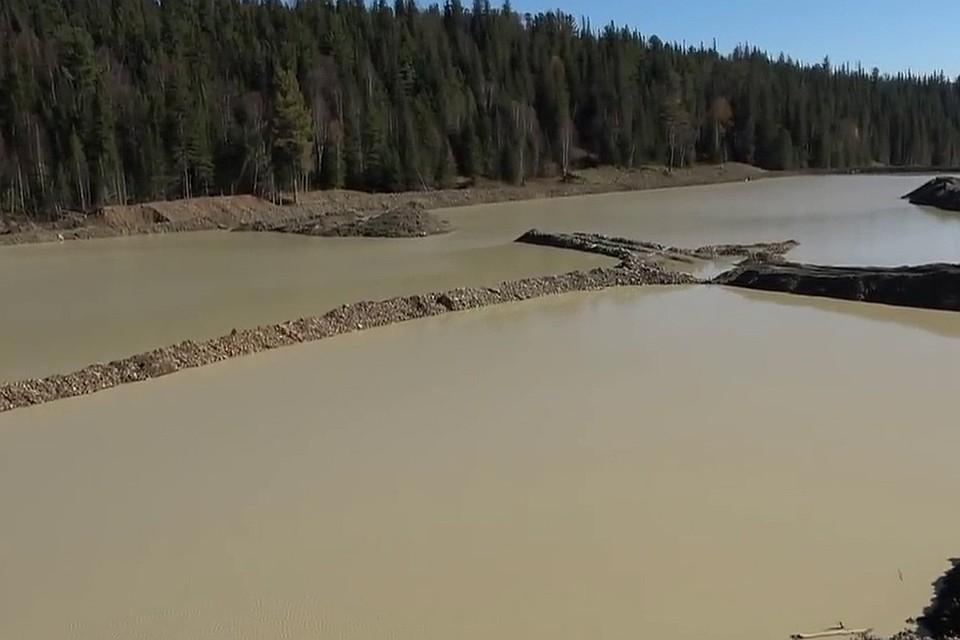 """Систему дамб на водоемах для добычи золота видно на кадре из фильма """"Золотая Сейба""""."""