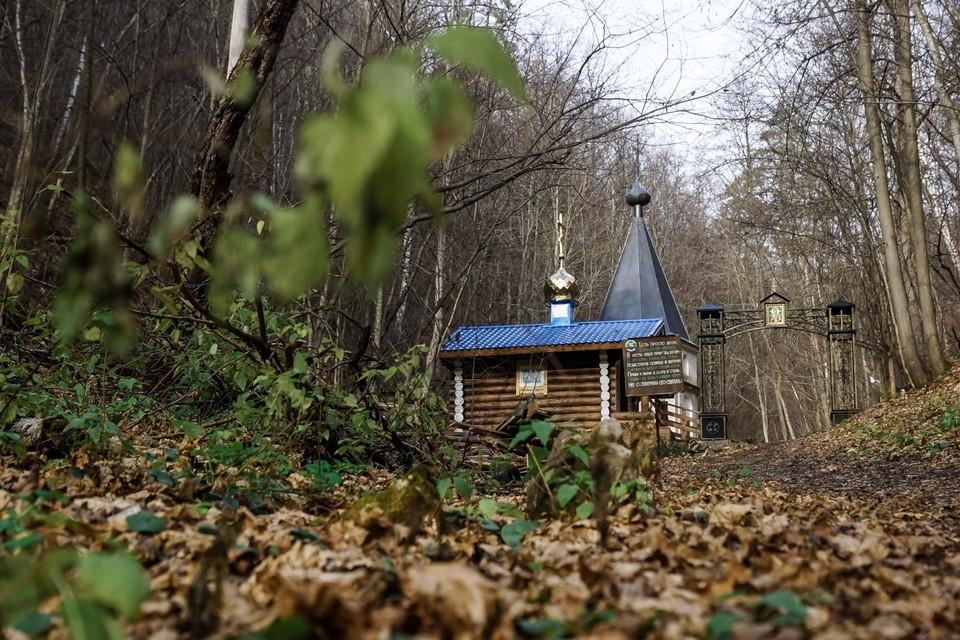 Дорогу к знаменитому источнику Каменная чаша в национальном парке Самарская Лука благоустроили
