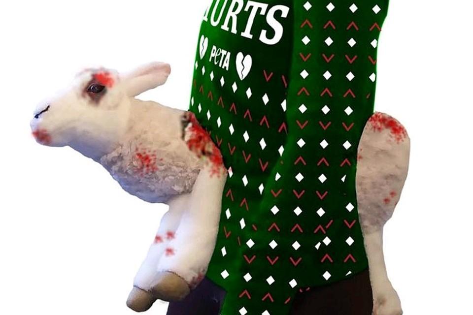 Свитер выполнен не из шерсти, а из акрила, но стоит больше 9 тысяч рублей Фото: shop.peta.org