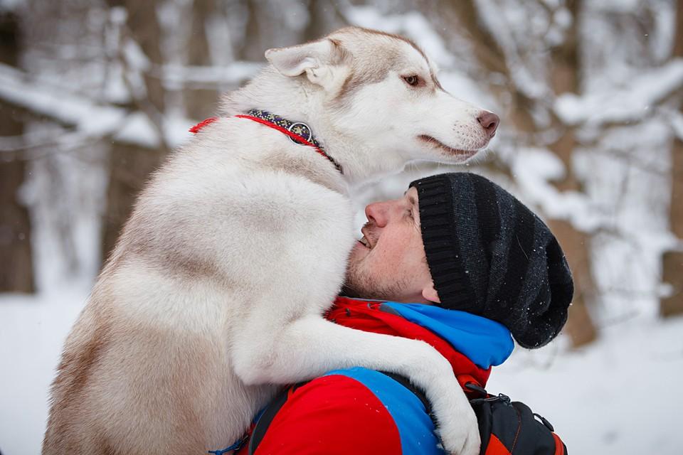 Продолжительность жизни собак зависит от породы