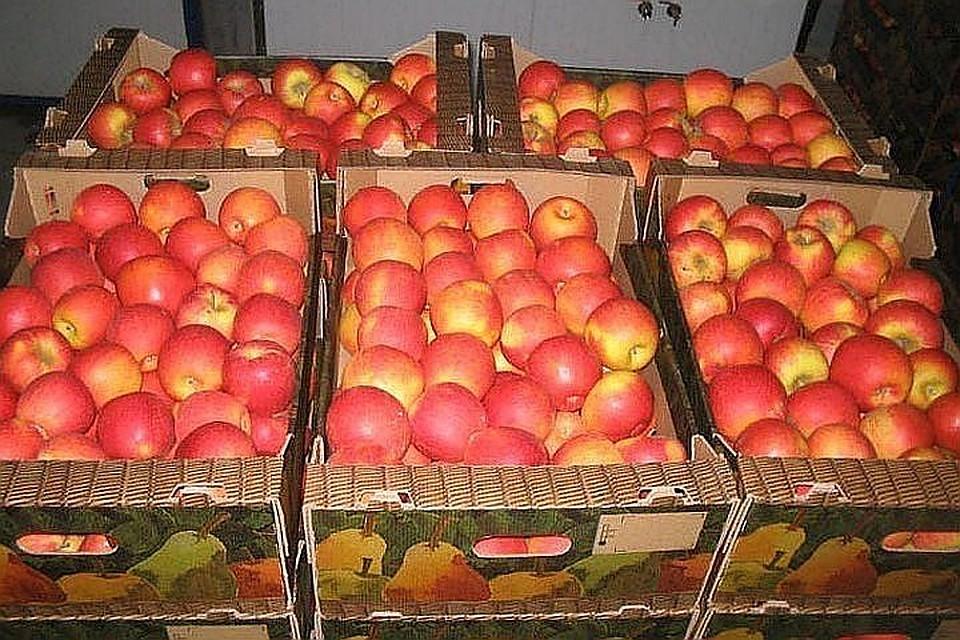 Торговля в духе советских традиций: лучшие яблоки - на экспорт, что похуже - в молдавские магазины