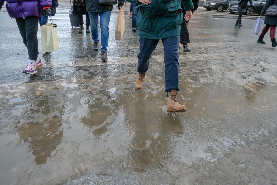 Погода 8 декабря в Санкт-Петербурге будет ненастной - горожан ждут мокрый снег и сильный ветер.