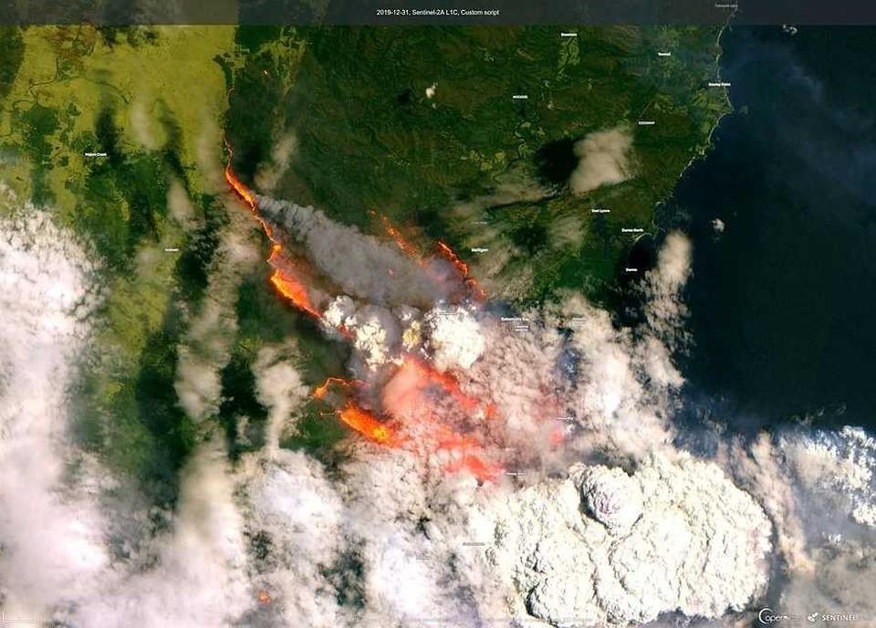 Огромная часть Австралии оказалась в огне лесных пожаров.