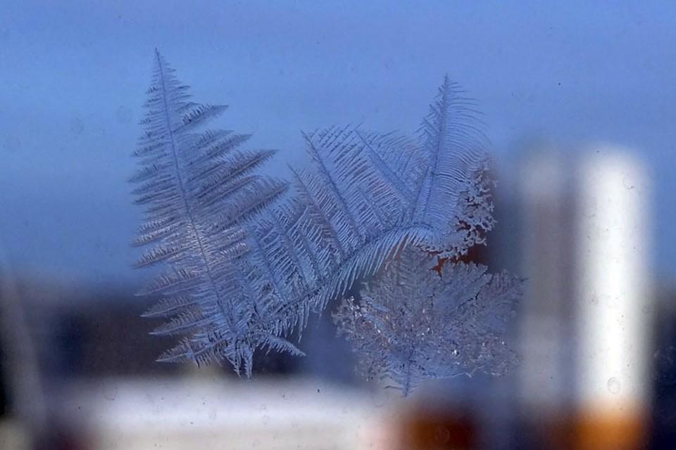 Погода в Югре 8 января: пройдёт небольшой снег и изморозь