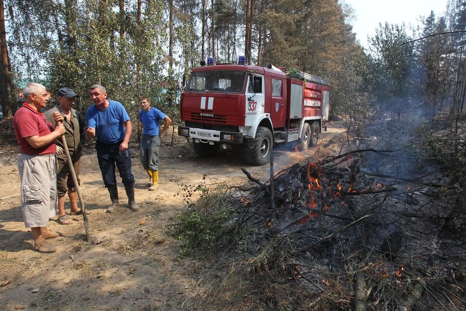 Леса горят каждый год, но пожары такого масштаба случились впервые
