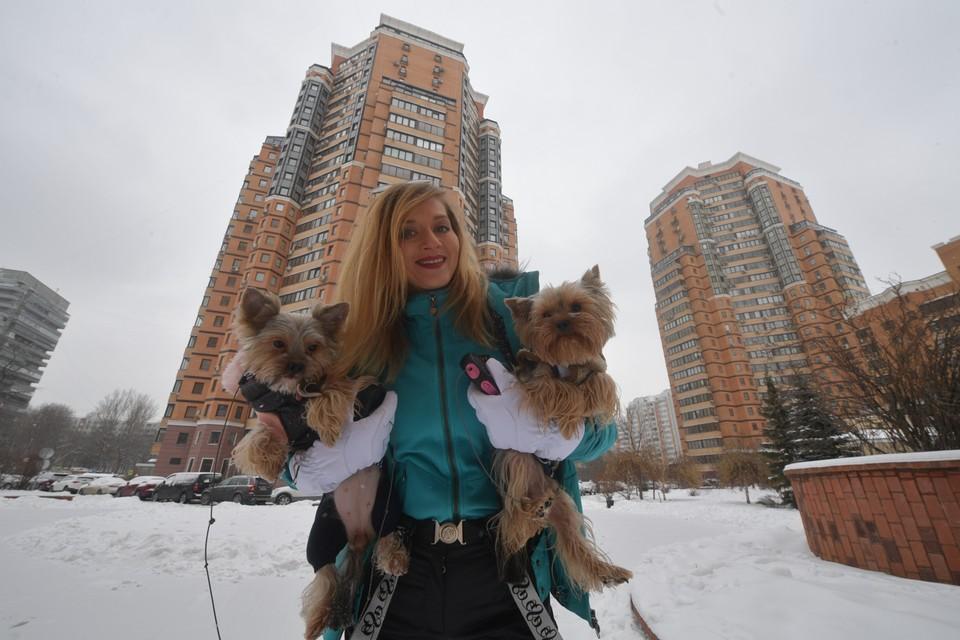 Владельцы псов говорят, что в Самаре с ними и прогуляться негде