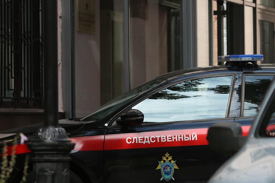 Продали лес на 9 миллионов рублей: на министерство лесного комплекса Иркутской области возбуждено уголовное дело