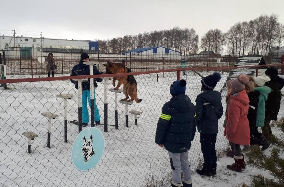 Фото пресс-службы МЧС России по Белгородской области.