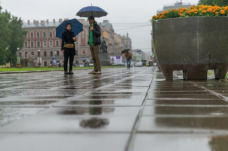 Аномальная зима 2020 года в Петербурге войдет в историю