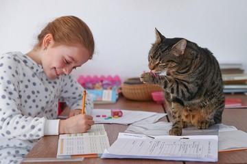 Дистанционное обучение: Ребенок пялится в экран, а мама за кадром решает задачки