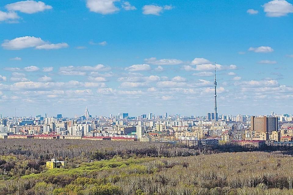 В дальнейшем экономика, возможно, простимулирует более экологичный подход к потреблению и обращению с отходами Фото: Кирилл Смирнов