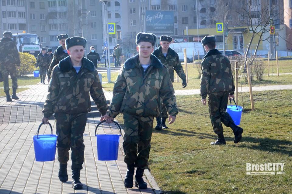 Солдат привлекли к городской акции «Полей дерево». Фото: brestcity.com