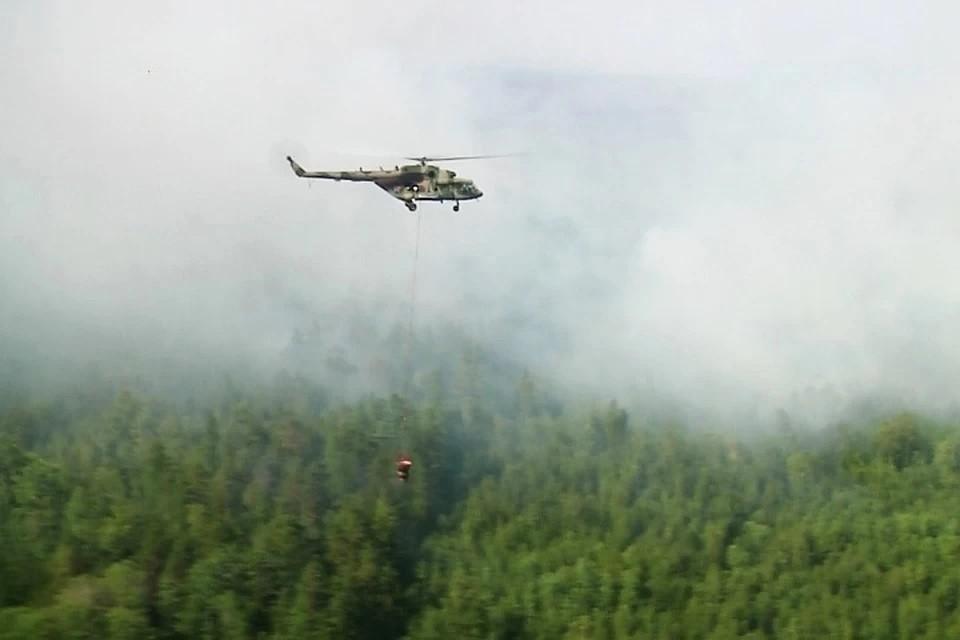 Гринпис не исключает повторение крупных лесных пожаров, как в 2019 году