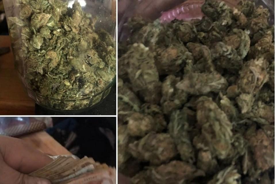 Пенсионер выращивал марихуану (Фото: столичная полиция).
