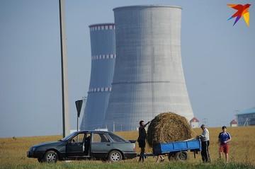 «БелАЭС – это огромная боль»: о какой энергетической безопасности говорили Лукашенко и президент Литвы
