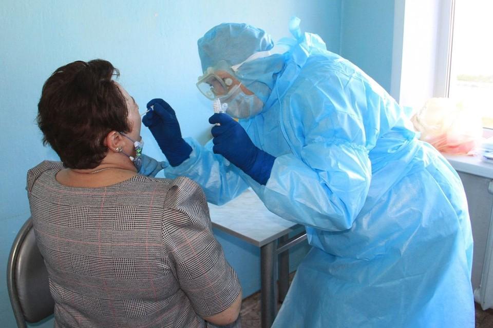 Медик берет анализ на коронавирус. Фото: минздрав Алтайского края