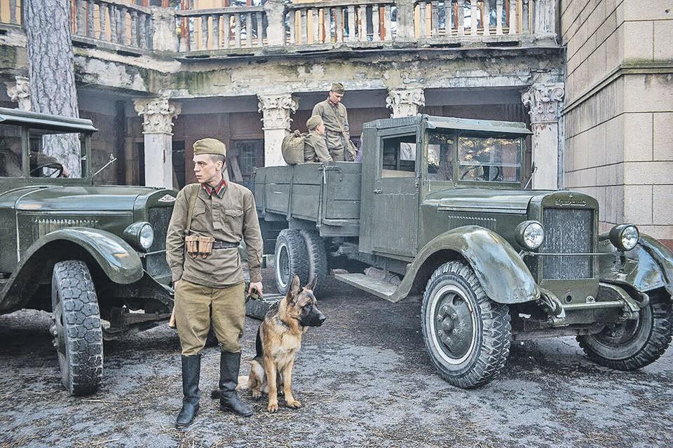 Собака - друг человека, особенно во время войны. Сериал «Джульбарс» поможет в этом убедиться. Фото: Первый канал