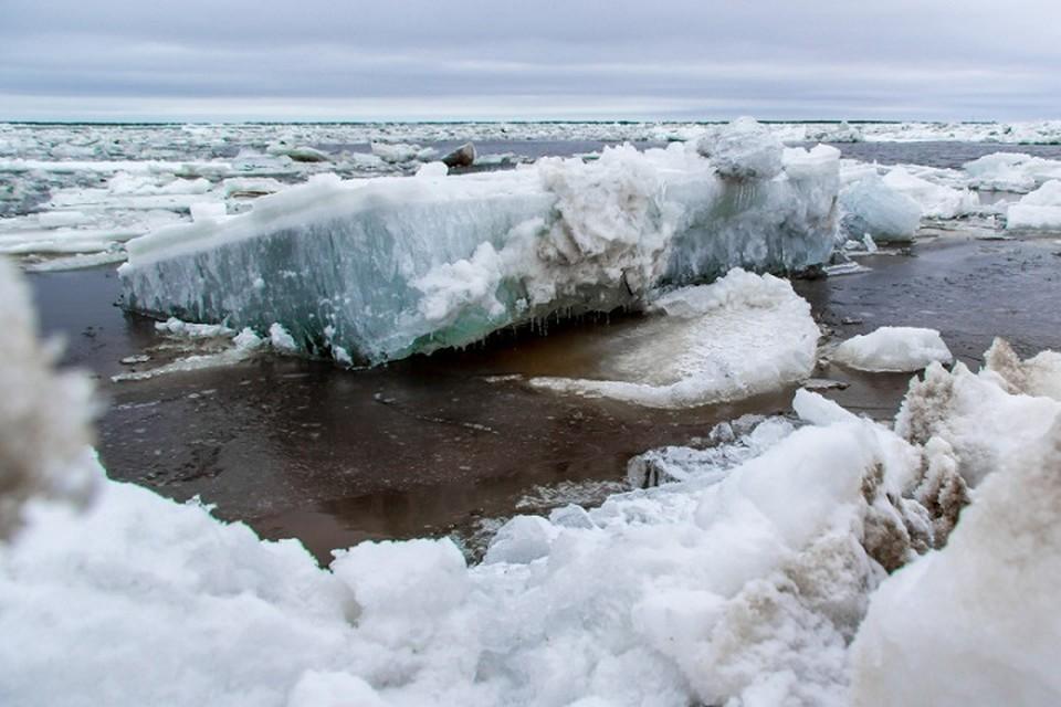 По реке Надым ледоход вышел в Обскую губу Фото: 89.mchs.gov.ru