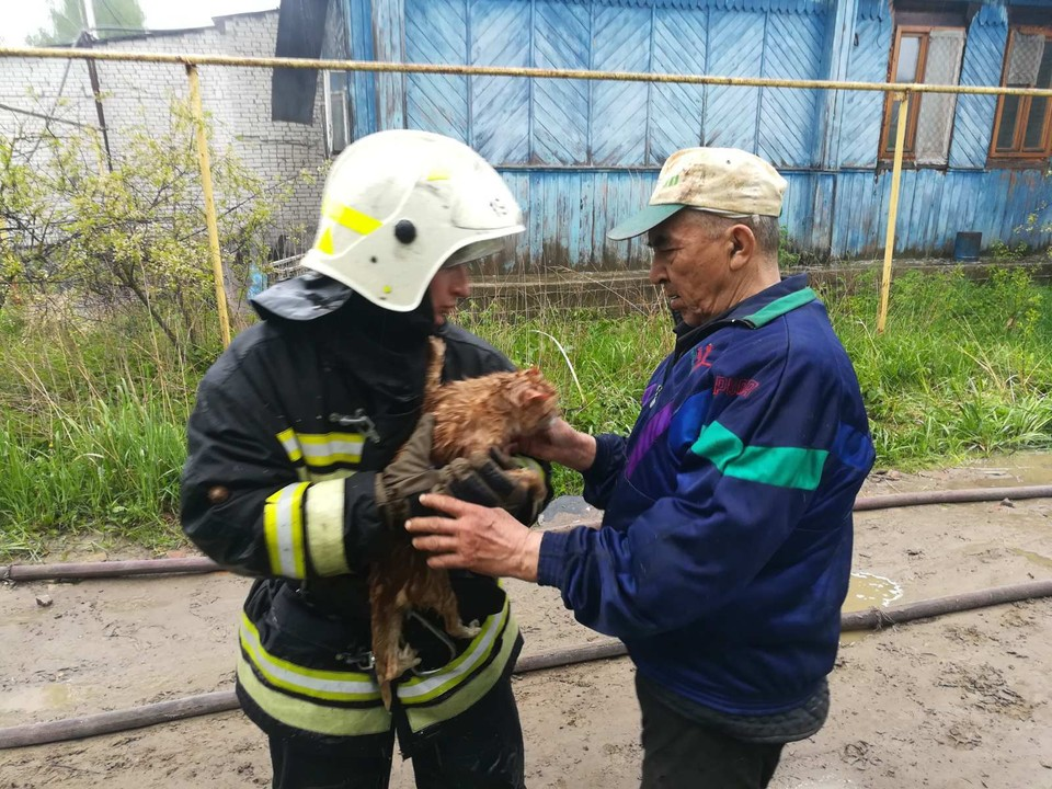 Спасенного кота передают соседям. Предоставлено МЧС России по Владимирской области.