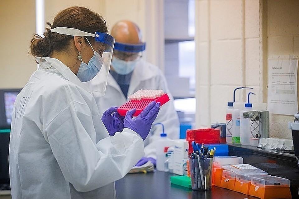 Мы собрали последние новости о коронавирусе в России на 25 мая 2020 года