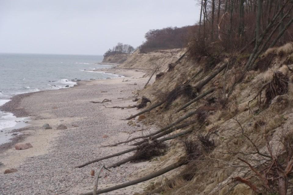 Узкий берег завален мертвыми деревьями, на склонах - последствия оползней...