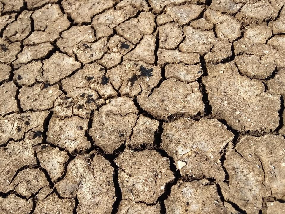 На полуострове летом будет низкий уровень воды в реках и водохранилищах.