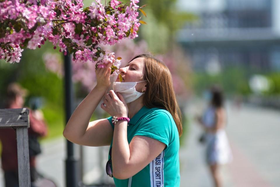 Новосибирск возглавил рейтинг сибирских городов по числу переболевших.