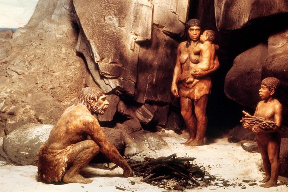 Неандертальцы наследили в нашем геноме в результате межвидового скрещивания