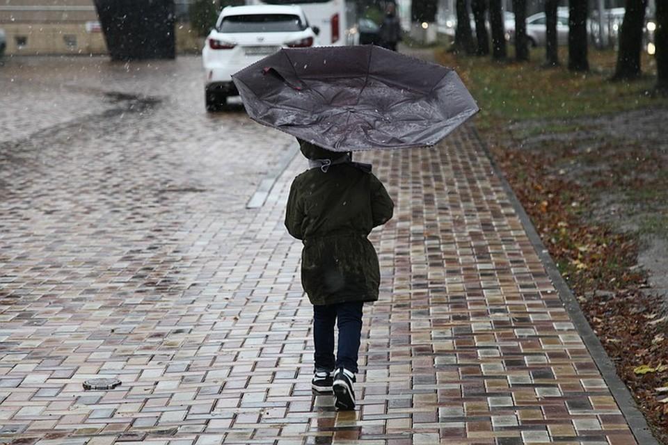 Погода в европейской части России придёт в норму 10 июля