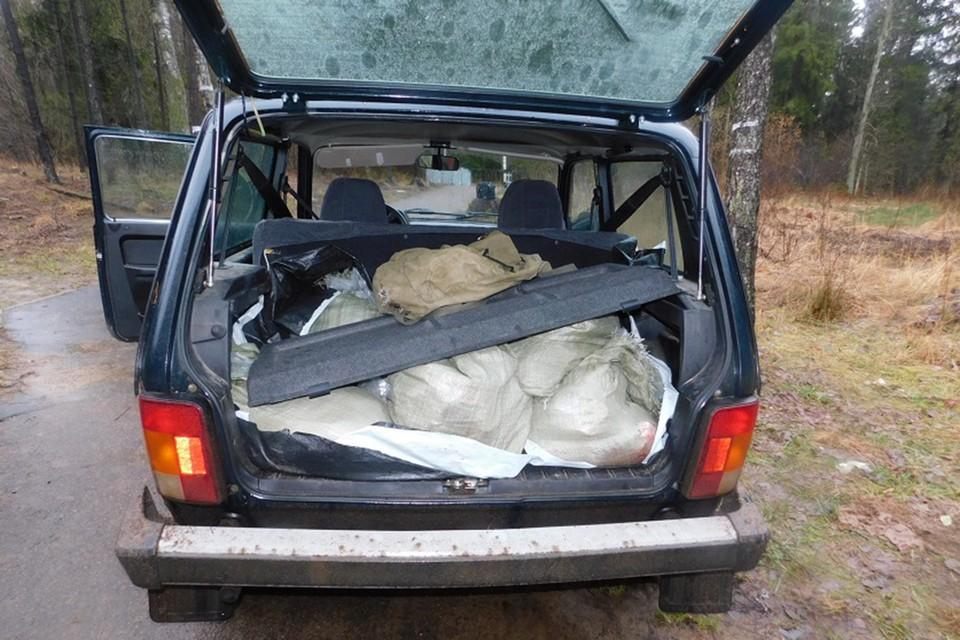 Семь мешков мяса браконьеры загрузили в авто, остальное закопали.Фото: СК.