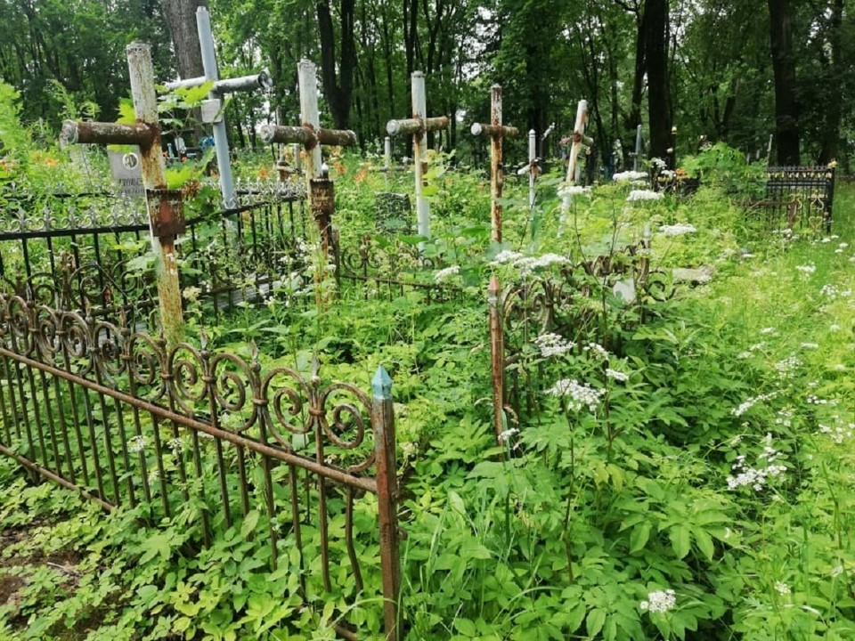 Заброшенность окутала основную часть Кальварийского кладбища