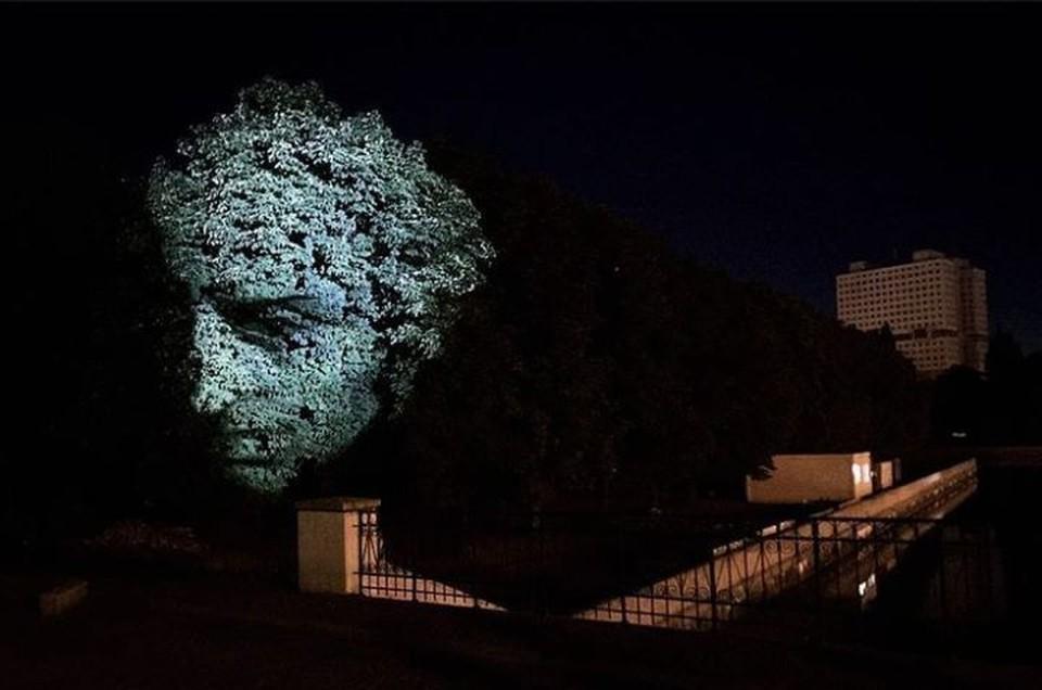Портрет Канта можно будет увидеть на дереве у Медового моста.
