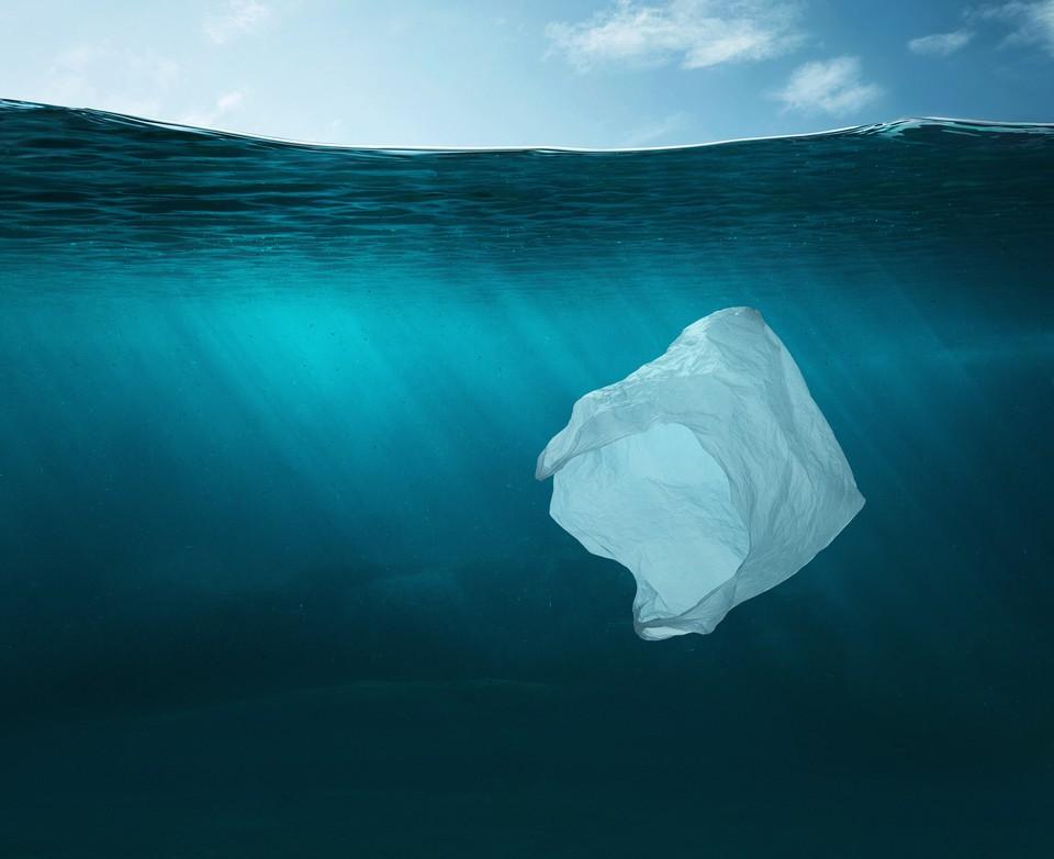Новый вид биопластика не содержит синтетического связующего компонента. Фото: shutterstock.com.