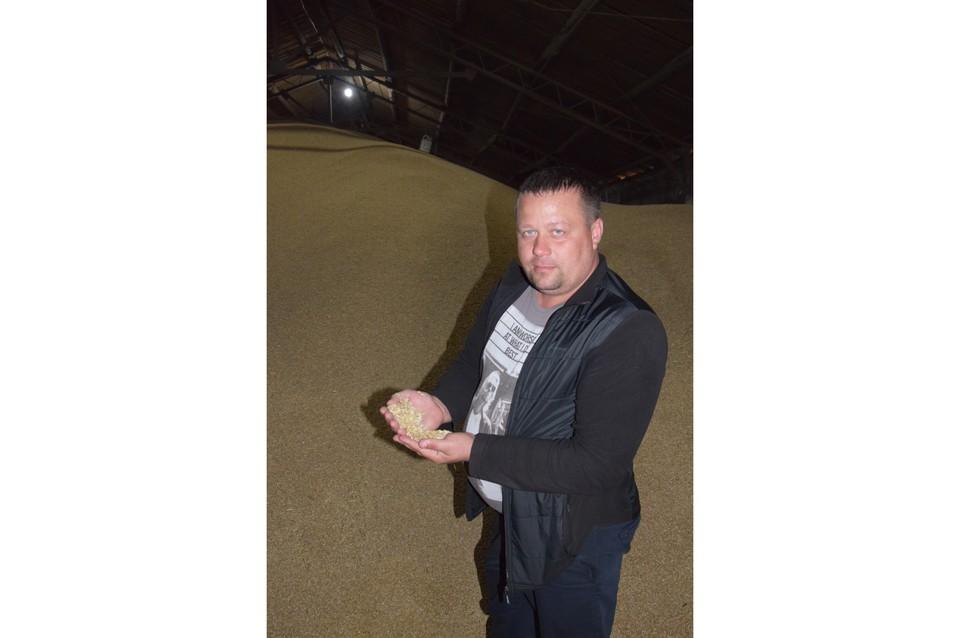 На своих полях Алексей Шамин использует новые технологии, с минимальной обработкой почвы. Фото: АО «Россельхозбанк»