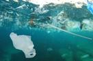 Остров из мусора размером с Францию обнаружил в океане внук Кусто
