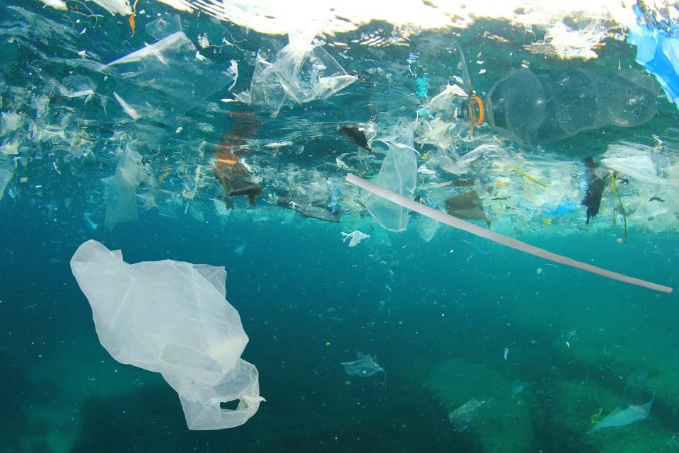 Мусорные острова состоят большей частью из пластика, попадающего в океан из рек. Фото: shutterstock.com.