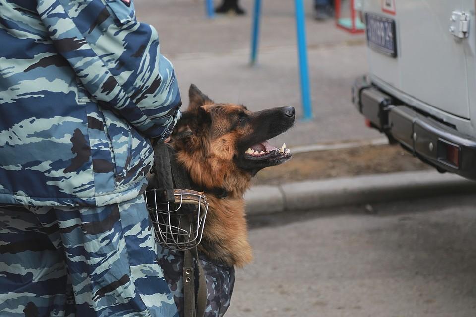 В Красноярском крае заминировали несколько судов