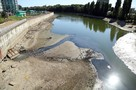 «Четыре трубы сливают нечистоты»: в Краснодаре река Кубань обмелела и стало видно, что в нее течет