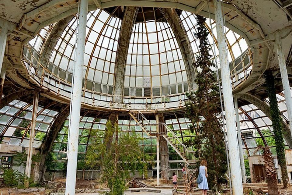 Так выглядит оранжерея внутри на редких фото тех, кому удалось попасть внутрь. Фото: Олег Стонко
