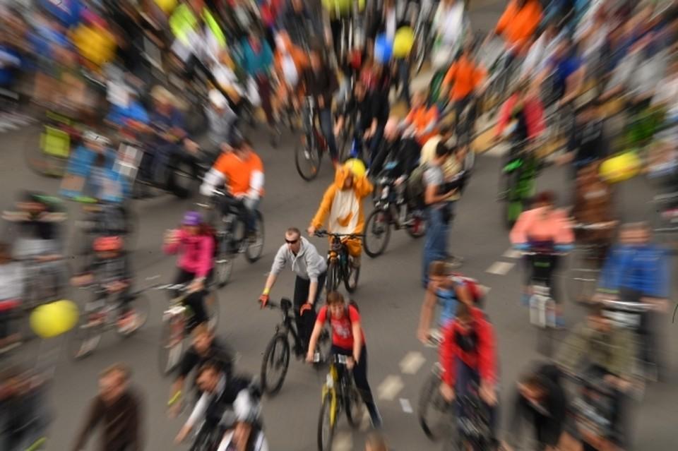 500 омских велосипедистов будут участвовать в велопробеге, который займет 6 часов.