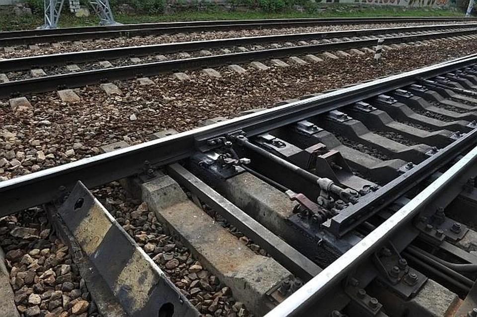 Спад перевозок Латвийских железных дорог произошёл из-за того, что Россия стала больше угля перегружать на терминалах в порту Усть-Луги
