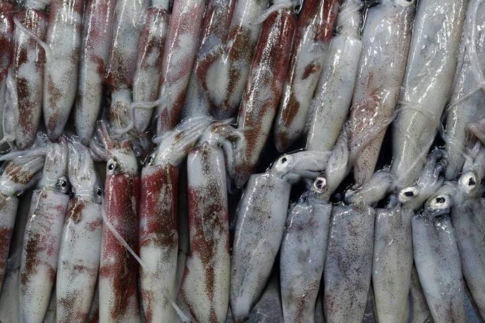 В китайском городе Чанчунь обнаружили коронавирус на упаковке замороженных кальмаров