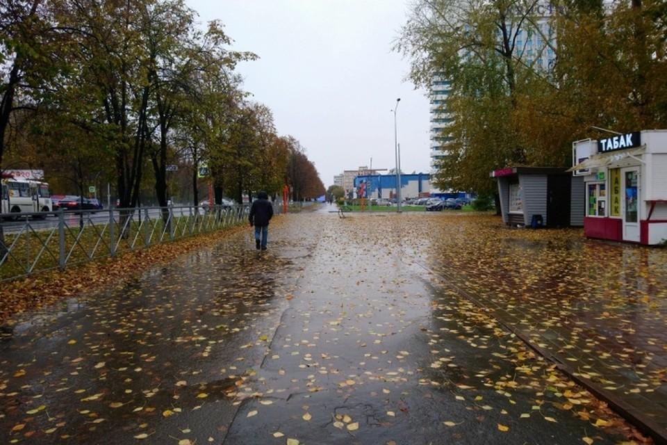Первый снег выпал в Кемерове