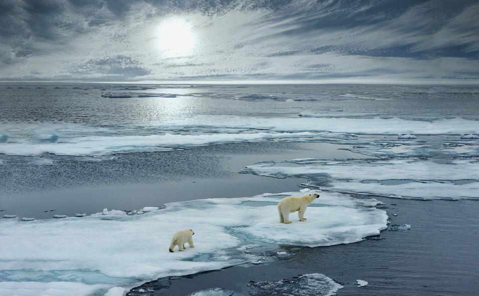 В Арктике наблюдается резкое потепление и таяние льда