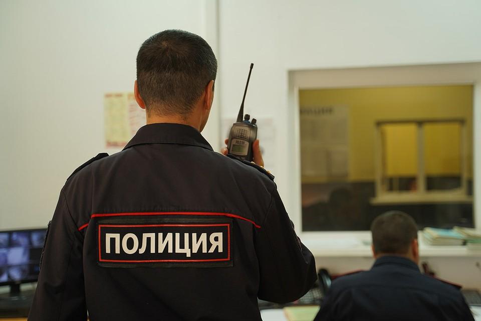 У преподавателя МГИМО украли две сумки Louis Vuitton и шубу на миллион рублей