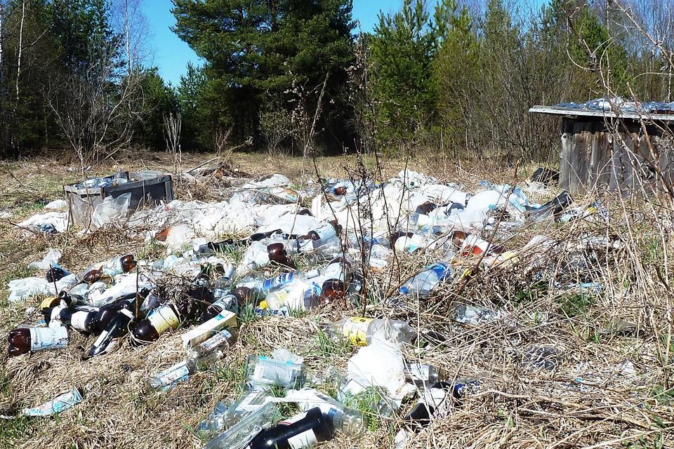 Весь этот пластик, который у нас повсюду, могли бы собрать местные школьники и студенты